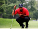 tiger woods wallpapers111